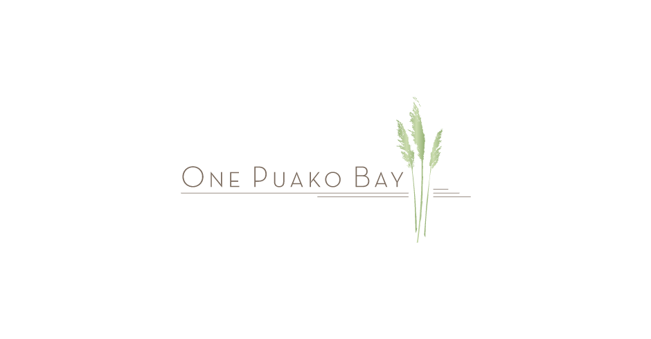 Hawaii Logo design, hawaii logos, One Puako Bay, graphic design, advertising agency, Team VIsion marketing
