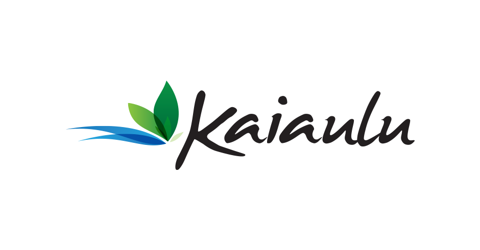 Hawaii, Logo Design, Kaiaulu Maui, Graphic Design Agency, Firm, Team Vision marketing