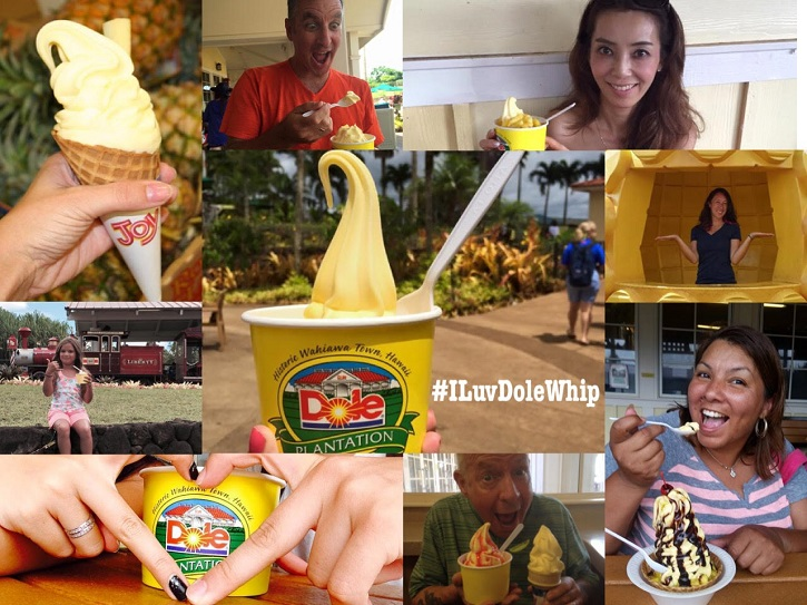 Dole Plantation, Organic Social Medial Marketing, Social Media Marketing, Facebook Marketing, Customer Reposts, Interactive Marketing