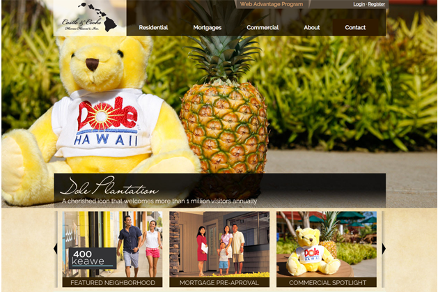 Hawaii Web Design, Honolulu, Web development, Castle & Cooke Hawaii, Team Vision Marketing