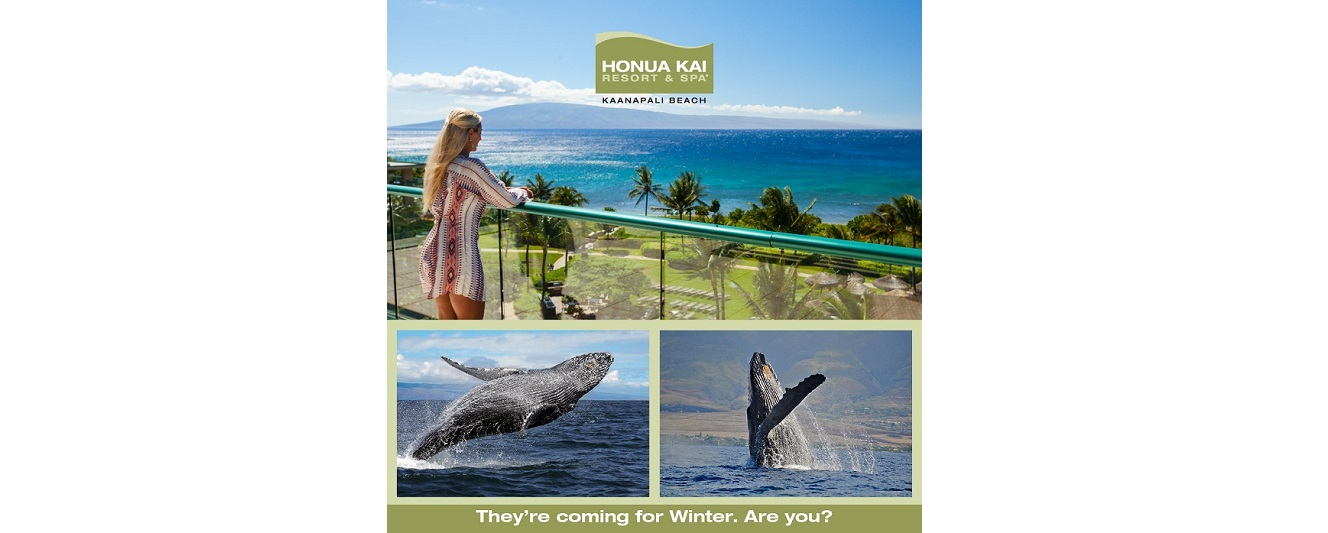 Honua Kai Resort Online Banner Advertising
