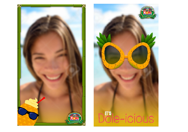 Team Vision , Dole Plantation, Snapchat filters, web design, onine marketing, hawaii