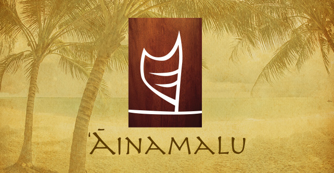 Hawaii Logo Design Agency, Ainamalu at Waikoloa , logo design, Big Island, Luxury Real Estate, Team Vision Marketing