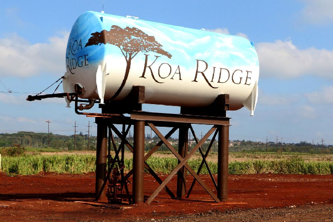 Water Tank Mural, Castle & Cooke, Hawaii advertising, markeiting, Team Vision Agency