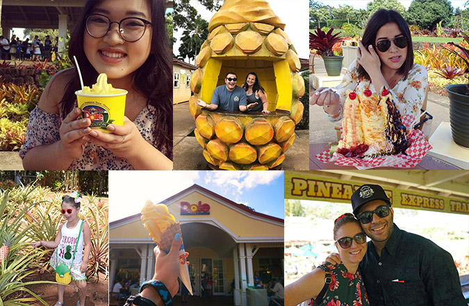 Dole Plantation, Instagram, Instagram marketing, social media marketing, team vision marketing, customer repost, organic social media marketing
