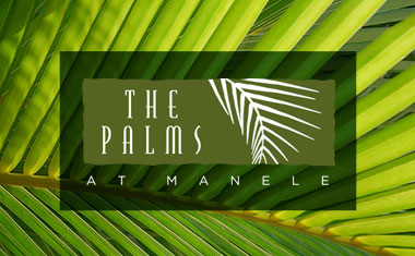 Logo Design, Honolulu, Hawaii, Lanai, Branding, Brand Identity, Team Vision Marketing