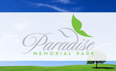 Hawaii logo design, honolulu logo design, logo design, branding, Team Vision Marketing
