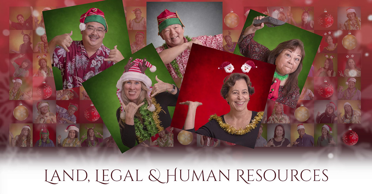 Hawaii Social media, social media marketing, Christmas Countdown, Team Vision Marketing