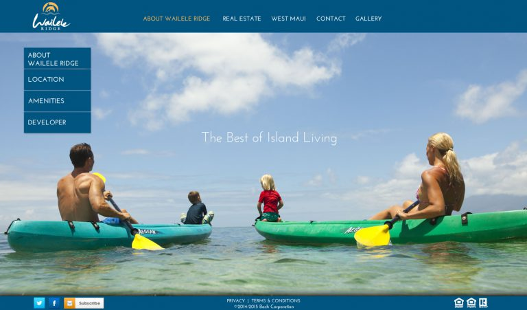 Hawaii Web Design, Maui Web Design, Branding , Real Estate Marketing, Wailele Ridge, Team Vision Marketing