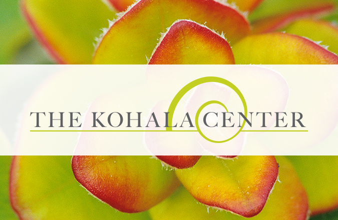 The Kohala Center, Big Island, Team Vision Marketing, Logo Design, Logo, Big Island Logo