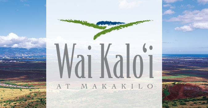 Wai Kalo'i, Makakilo, Logo Design, Hawaii logo design, oahu logo, hawaii branding, hawaii logo, oahu, team vision marketing agency