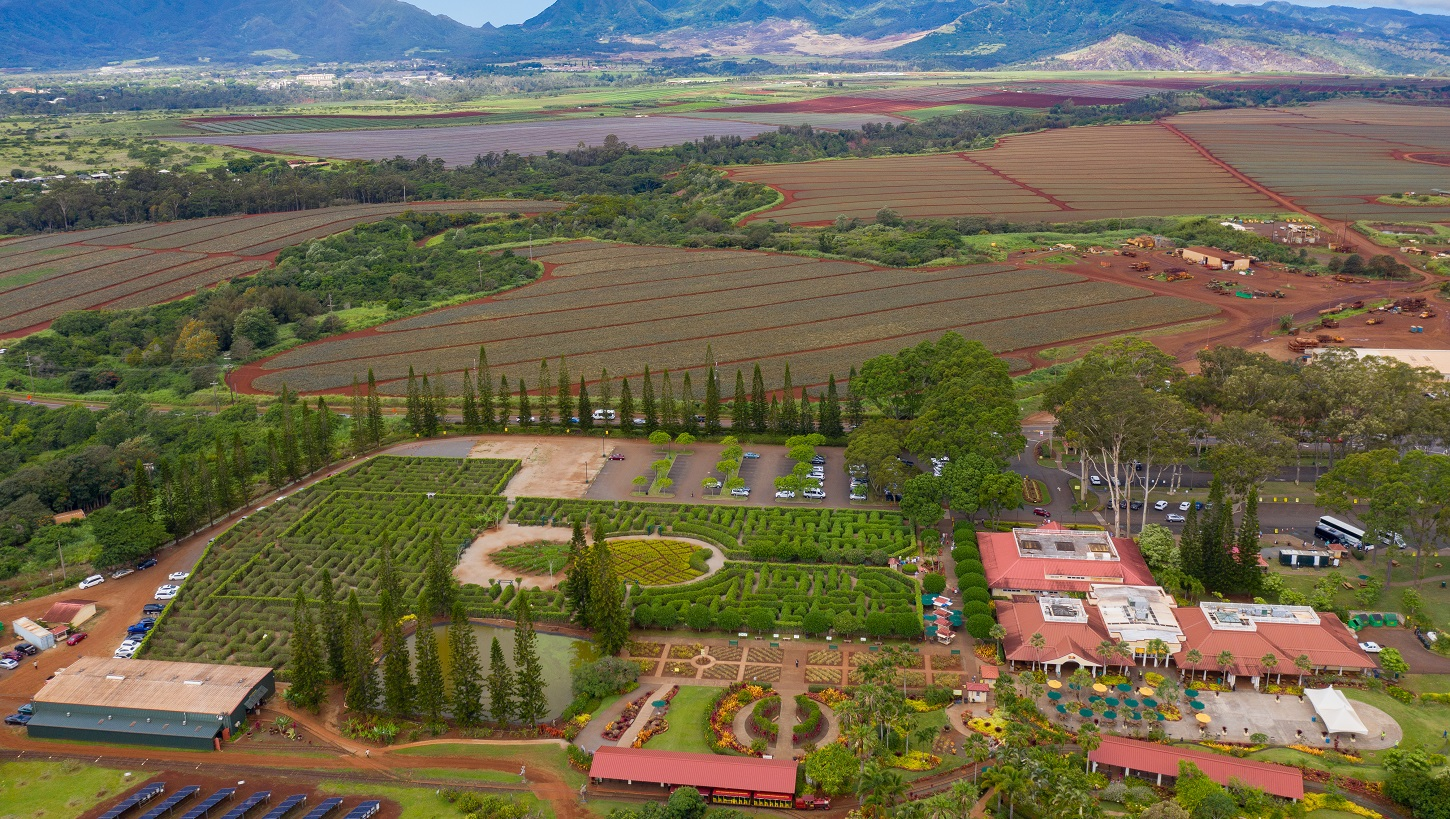 Hawaii Commercial drone photography, Advertising Agencies, Dole Plantation, Team Vision Marketing