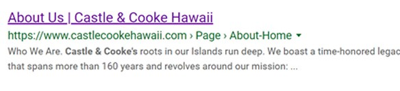 Hawaii SEO - Basic Google Result Feature - Hawaii SEO