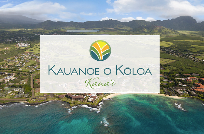 Hawaii Logo Design - Kauanoe Kauai